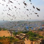 Moments of India Teil 1: Jodhpur